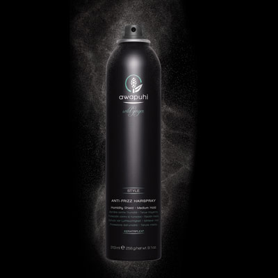 AWAPUHI WILD GINGER<BR/>ANTI-FRIZZ HAIRSPRAY